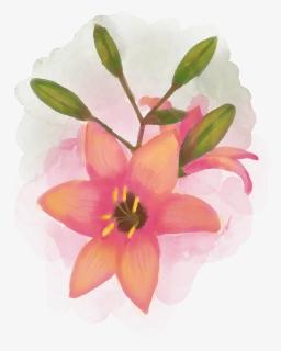 Watercolour Flower Bouquet Floral Watercolor Nature Gambar