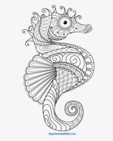 Seahorse Coloring Page | 280x224