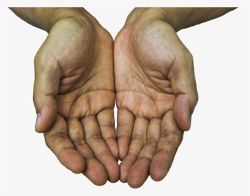 Hand Png Images Transparent Hand Image Download Page 5 Pngitem From cliparts to people over logos and effects with more than 30000 transparent free high resolution png photos on line. hand png images transparent hand image