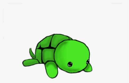 Cute Turtle Drawing Turtle Drawing Easy Cute Hd Png Download