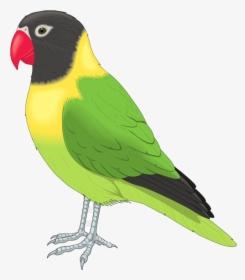 Bird Clip Art Flying Birds Clipart Free Transparent Pet Bird Clipart Hd Png Download Transparent Png Image Pngitem