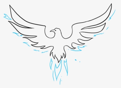 How To Draw Phoenix Bird Easy Drawing Hd Png Download Transparent Png Image Pngitem