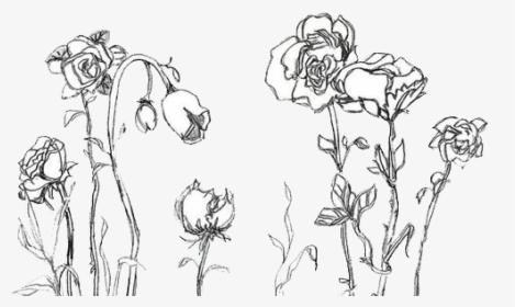 Aesthetic Flower Drawing Png Transparent Png Transparent Png Image Pngitem