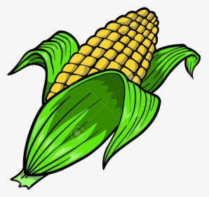 Corn Clip Art Image | Gallery Yopriceville - High-Quality Images and  Transparent PNG Free Clipart