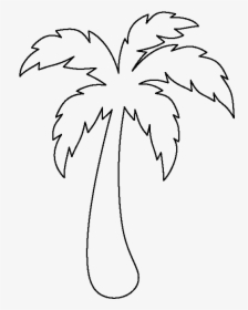 Palm Tree Outline Easy Simple Palm Tree Drawing Hd Png Download Transparent Png Image Pngitem