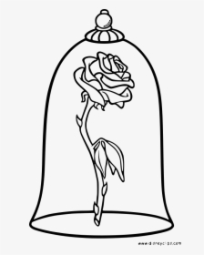 Beauty And The Beast Enchanted Rose Drawing