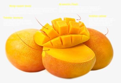 528 5283445 alphonso mango png alphonso indian mangoes transparent png