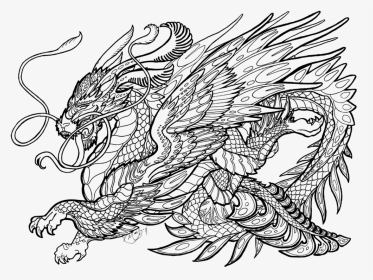Realistic Dragon Coloring Pages For Adults Coloring Free Printable Dragon Coloring Pages Hd Png Download Transparent Png Image Pngitem