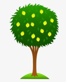 Tree Clipart Cartoon Lemon Lemon Tree Drawing Easy Hd Png Download Transparent Png Image Pngitem Draw a basic tree base. tree clipart cartoon lemon lemon tree