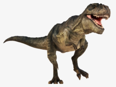 Dinosaur Png Transparent Images T Rex Dinosaur Png Png Download Transparent Png Image Pngitem Dinosaurs are a diverse group of reptiles of the clade dinosauria that first appeared during the triassic. dinosaur png transparent images t rex