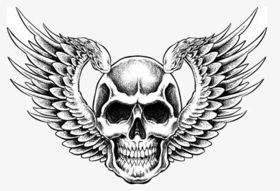 Dodgers Drawing Sugar Skull Transparent Png Clipart Skull With Wings Vector Png Download Transparent Png Image Pngitem