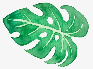 Tropical Leaves Watercolor Png Transparent Png Transparent Png Image Pngitem