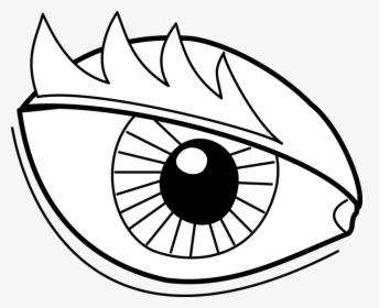 Clip Art Iris Eyes Transprent Png Desenhos Para Desenhar