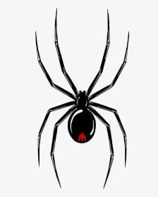 Spider Tattoo Png Transparent Png Transparent Png Image